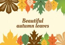 秋季秋天枫叶树叶背景素材