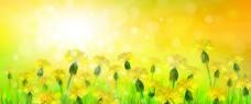 金黄色背景和春天风景矢量素材