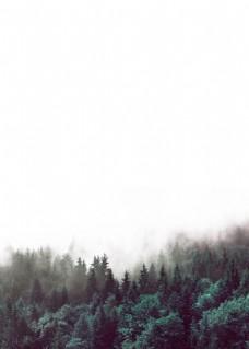 手绘森林绿色树木装饰画
