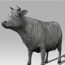 卡通动物牛模型