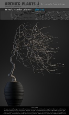 欧美风花瓶植物3d模型