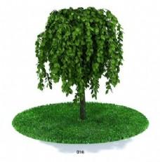 茂盛树模型