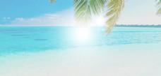 蓝色大海椰树banner背景素材