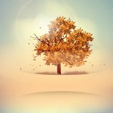 黄色秋天落叶背景矢量素材