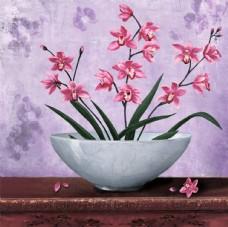欧美静物花卉 装饰画