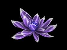 紫色发光花元素