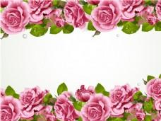 玫瑰花背景图片素材