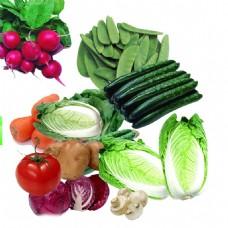 绿色蔬菜合集